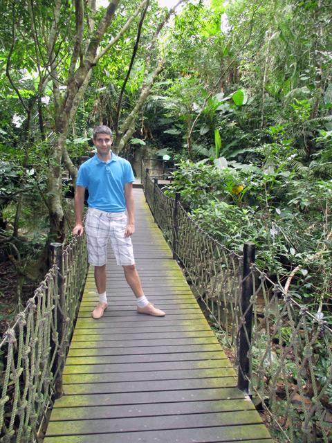 Янода, навесной мост