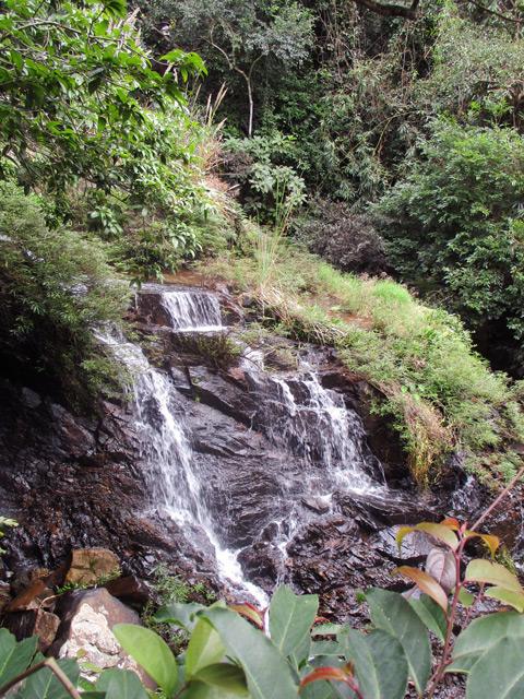 Янода, водопады