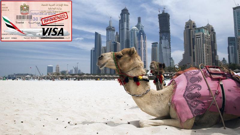Бесплатная виза в ОАЭ 2017