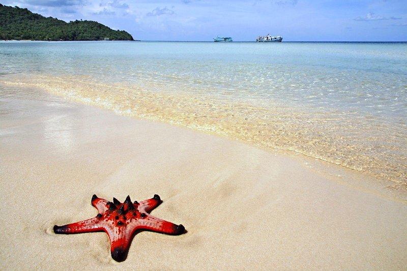 Бай Раш Вем (Bai Rach Vem) – пляж морских звёзд